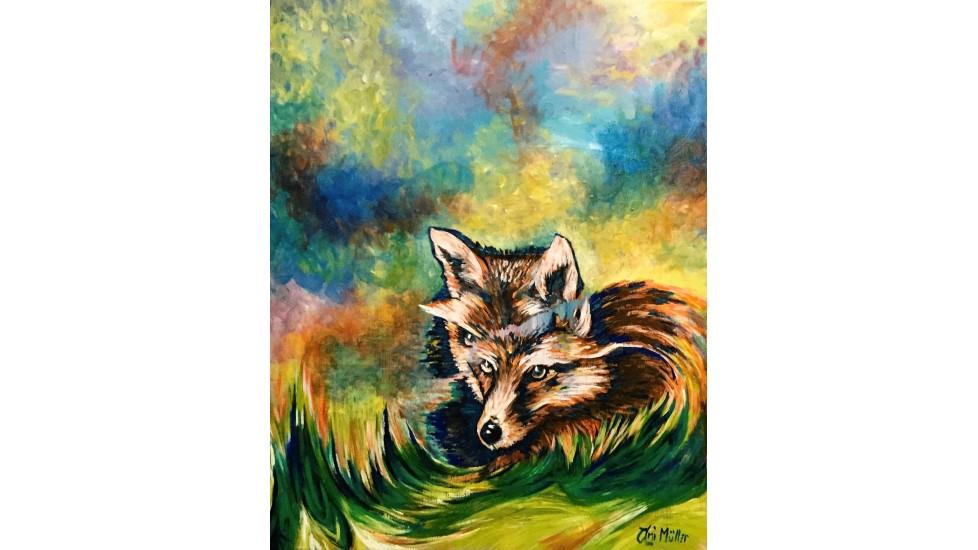 Regard du renard